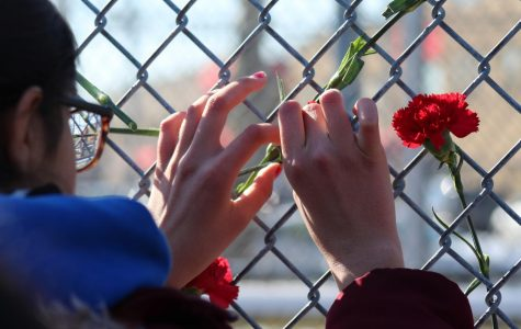 A student shows her respect for the Parkland victims by leaving her flower on the gate