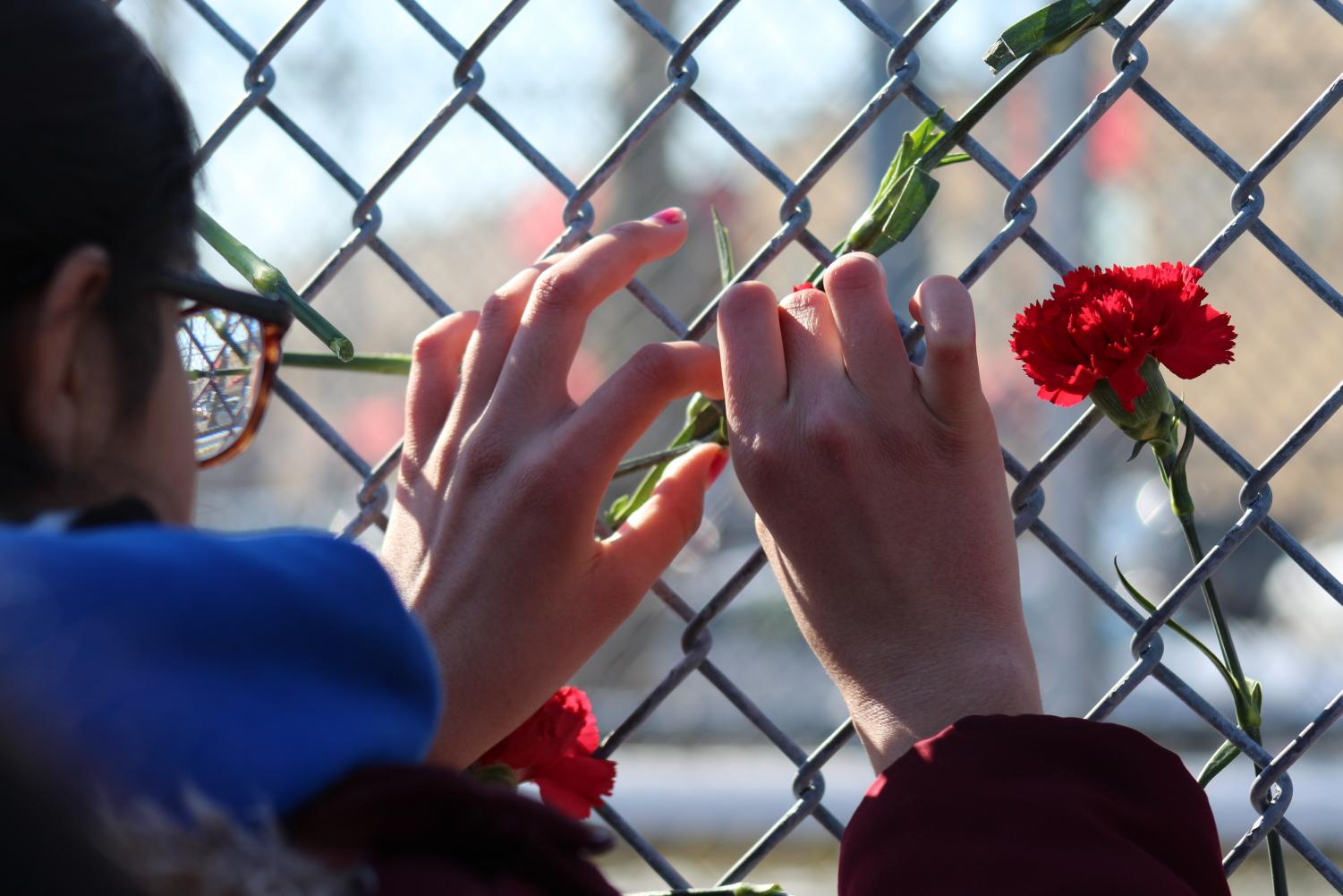 A+student+shows+her+respect+for+the+Parkland+victims+by+leaving+her+flower+on+the+gate