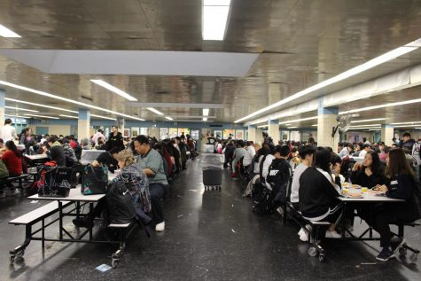 Francis Lewis is comprised of an estimated 4,700 students and is infamous for its overcrowded hallways. With the stresses of classes, exams, and time allotted, many students wonder: Do all students receive a lunch period?