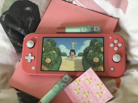 The Wonders of Animal Crossing on Mental Health